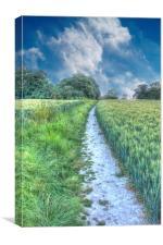 The Well Trodden Path, Canvas Print