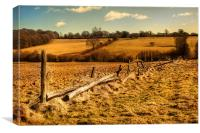 Old Fence, Canvas Print