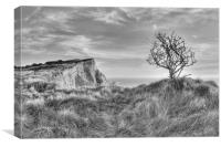 Lone Tree At Shakespeare Cliff, Canvas Print