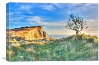 Sun Up At Shakespeare Cliff, Canvas Print