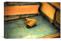 Leaf Out Of A Book, Canvas Print