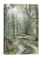 Woodland Sheep In Winter, Canvas Print