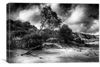 Cretaceous Shore, Canvas Print