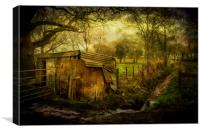 The Old Shed, Canvas Print