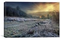Frosty Meadow, Canvas Print