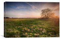 South Willesborough Sunset, Canvas Print