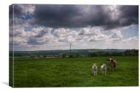 Sheep In The Stour Valley, Canvas Print