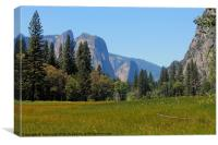 Yosemite National Park, Canvas Print
