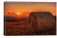 Sunset on the South Downs, Canvas Print