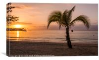 Jamaican Sunset, Canvas Print
