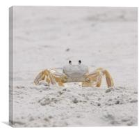 Beach Guard, Canvas Print