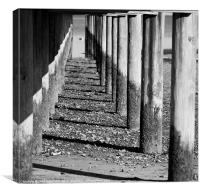 Under the Boardwalk, Canvas Print