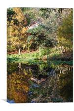 Reflections of a Florida Morn, Canvas Print
