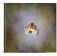 Coming out in the Open, Canvas Print