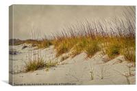 Beach Grass and Sugar Sand, Canvas Print