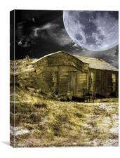 Prairie Life Digital, Canvas Print