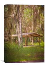 Southern Shade, Canvas Print
