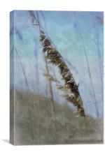 A Whisper in the Wind, Canvas Print