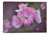 Pretty Blossoms, Canvas Print