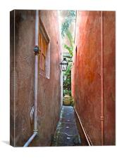 Just a Narrow NOLA Alley, Canvas Print