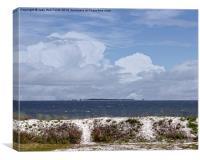Gulf Coast Beauty, Canvas Print