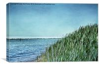 The Bay at Massapequa, Canvas Print