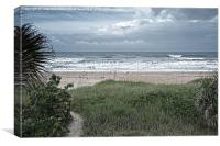 Flagler Beach Path, Canvas Print