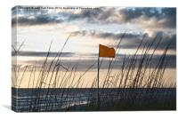 Yellow Flag Warning, Canvas Print