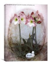 Grandma's Amaryllis Garden, Canvas Print