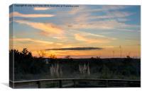 December Forest Sunset, Canvas Print