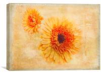 Bright Orange, Canvas Print