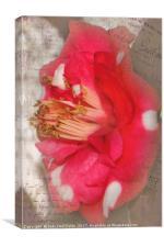 Flowery Memory, Canvas Print