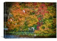 Rookery in Autumn, Canvas Print
