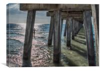 Under the Naples Pier, Canvas Print