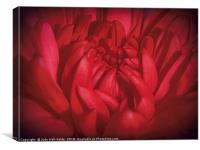 Richly Red, Canvas Print