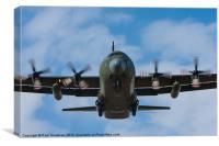 C-130 Hercules landing, Canvas Print