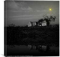 the night, Canvas Print