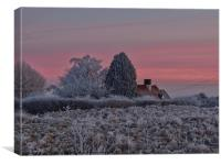 frosty day 2, Canvas Print