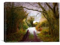 the painted lane, Canvas Print