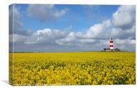 Happisburgh Lighthouse,Norfolk.
