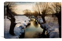 Stream in Winter, Canvas Print