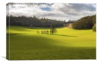 Rolling Surrey hills , Canvas Print