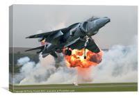 Hawker Harrier Jet, Canvas Print