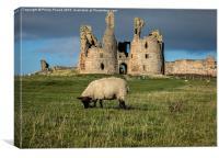 Dunstanburgh Castle , Canvas Print