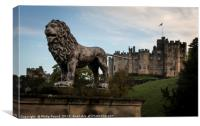 Lion at Alnwick Castle in Northumberland, Canvas Print