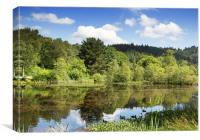 small lochan at The Lodge Forest Visitor Centre, Canvas Print