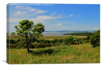Grange-over-Sands from Warton Crag, Canvas Print