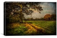 Tidmarsh Meadows in Autumn, Canvas Print