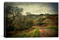 An Anglesey Lane, Canvas Print