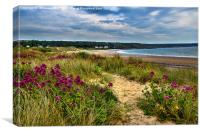 Port Eynon Sand Dunes, Canvas Print
